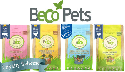 beco pets products stockists